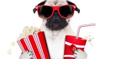 """Disfruta del cine con geniales descuentos gracias a """"Tu Pase"""""""
